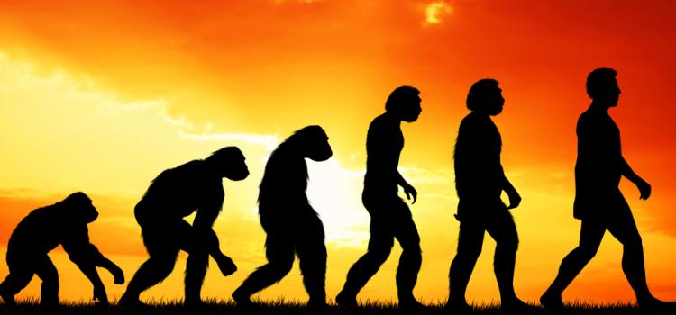 Uspjeh darvinizma