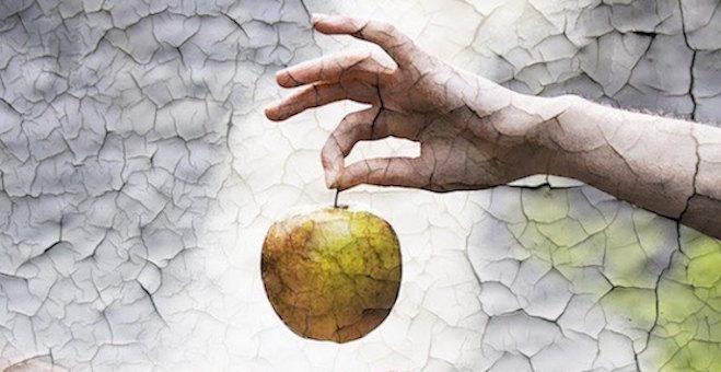 Sud i milost u Edenu