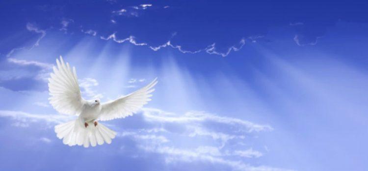Sveti Duh bdije
